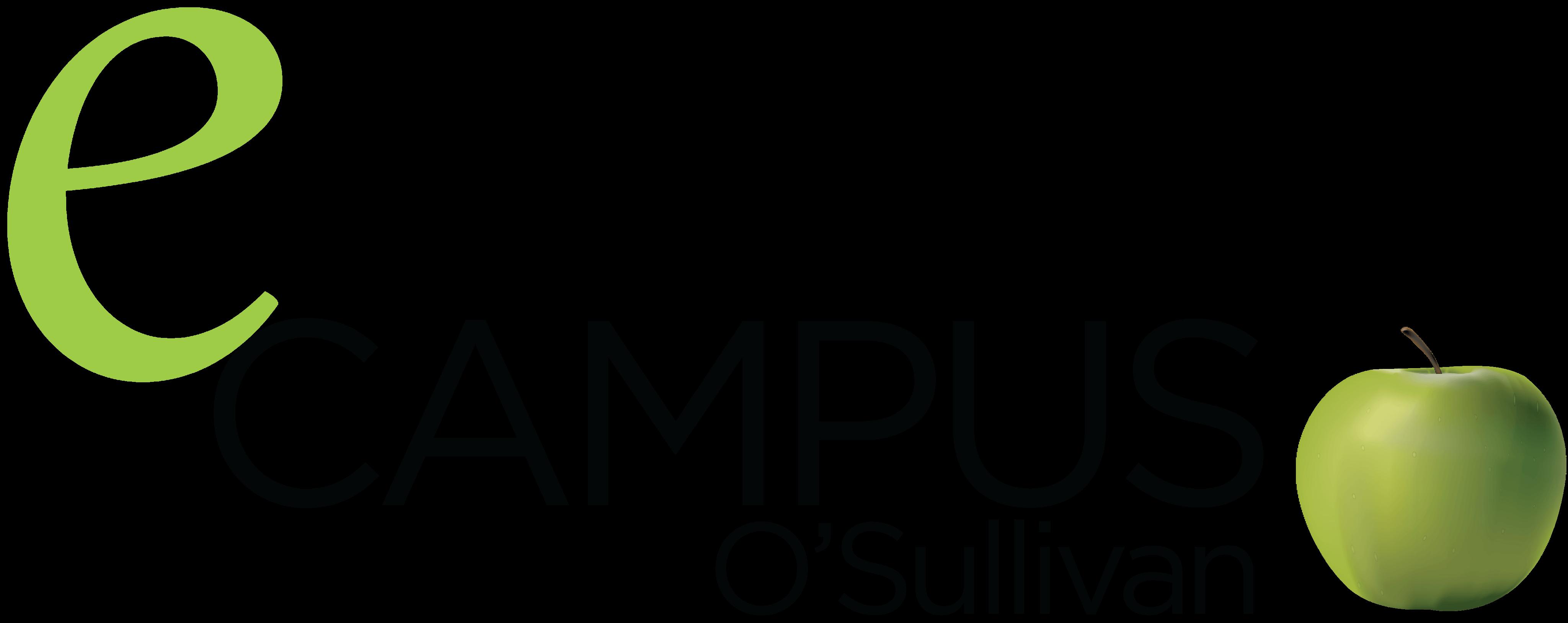 E-campus O'Sullivan